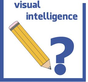 Visual Intelligence